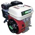 Бензиновый двигатель IRON ANGEL Е200 (Z)